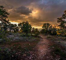 Canyon Path by barkeypf