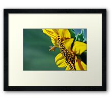 All In A Day's Work... Framed Print