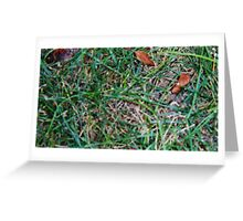 Grassy Earth Greeting Card