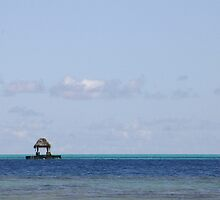 Polynesian Waters by HappyYakImages