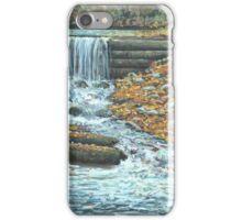 Iargo Springs iPhone Case/Skin