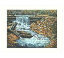 Iargo Springs Art Print
