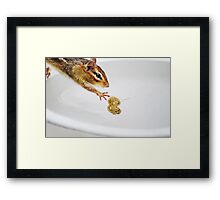 Almost Got It...!! Framed Print