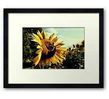Invisible touch Framed Print