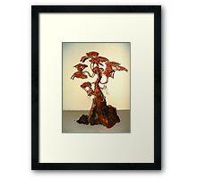 Copper Bonsai Framed Print