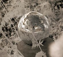 Infrared Crystal Ball Self Portrait by Troy Dodds