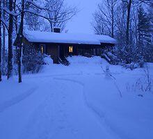 Snow night by Presilla
