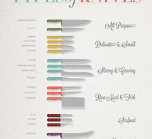 Types of Knives Infographic by simcomdesigns