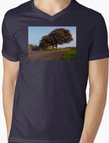 The Fabulous Fall  Mens V-Neck T-Shirt