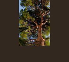 Pollensa Pine Tree T-Shirt