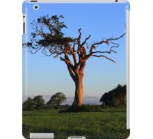 An Old Friend iPad Case/Skin