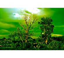 Haunted Green Photographic Print