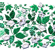 Datura Flowers & Paisley Leaves by PrivateVices