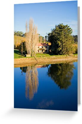 Mirror Image at Appletree Cottage by Elana Bailey