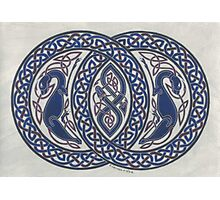 two dogs and serpent in circles Photographic Print