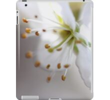 ~ Printemps :~: Spring  - JUSTART © iPad Case/Skin