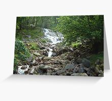 Lakeland Brooke Greeting Card
