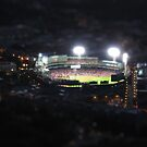 Mini Fenway Park by Judi FitzPatrick