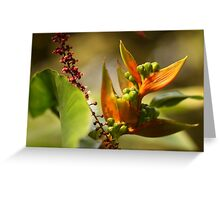 Tropical Delight   - JUSTART © Greeting Card