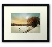 Snow fields Framed Print