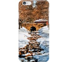 Dimmick Park, Hellertown Pa. iPhone Case/Skin