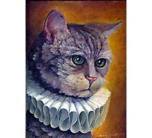 Cat in a collar Photographic Print