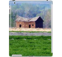 Outside Roswell, Idaho...drive by iPad Case/Skin