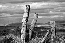 Boundaries by Marloag