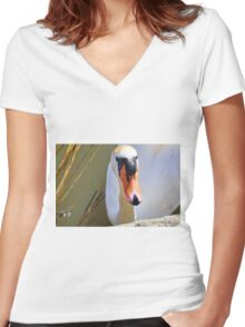 Do You Have A Treat For Me,,,,,,,,,, Women's Fitted V-Neck T-Shirt
