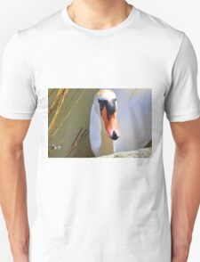 Do You Have A Treat For Me,,,,,,,,,, Unisex T-Shirt