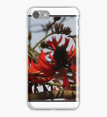 honeyeater iPhone Case/Skin