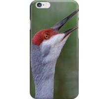 Love that Ruckus iPhone Case/Skin