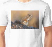 Encore, Encore! Unisex T-Shirt