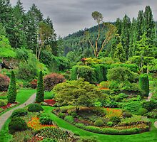 Victoria Canada Butchart Garden by JeremiahB