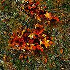 Autumn Afterthoughts by RC deWinter