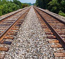 Twin Tracks by Kenneth Keifer