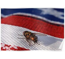 Fourth of July Fly Poster