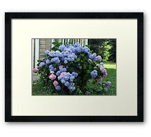 One Of Every Flavor Framed Print