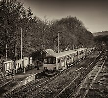 Departing Yeoford  by Rob Hawkins