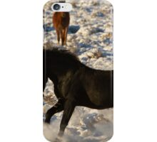 A Show In The Snow iPhone Case/Skin