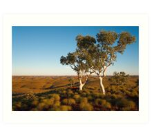 Two Snappy Gums Art Print