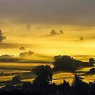 Rolling Golden Morning Mist by Sandra Cockayne