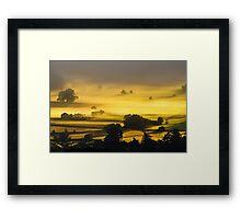 Rolling Golden Morning Mist Framed Print