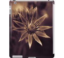 Raspberry Chocolate Succulent iPad Case/Skin