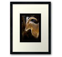 Capricornia Framed Print