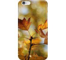 Autumn Oak Leaves iPhone Case/Skin