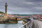 Whitby Harbour by Paul Thompson Photography