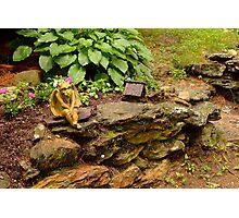 One footed Gargoyle's Garden Photographic Print