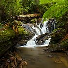 Olinda Falls - Victoria by Chris Kean