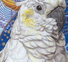 Celestia by Thaneeya McArdle